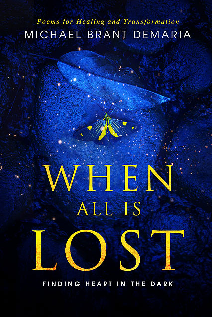 michael-demaria-when-all-is-lost